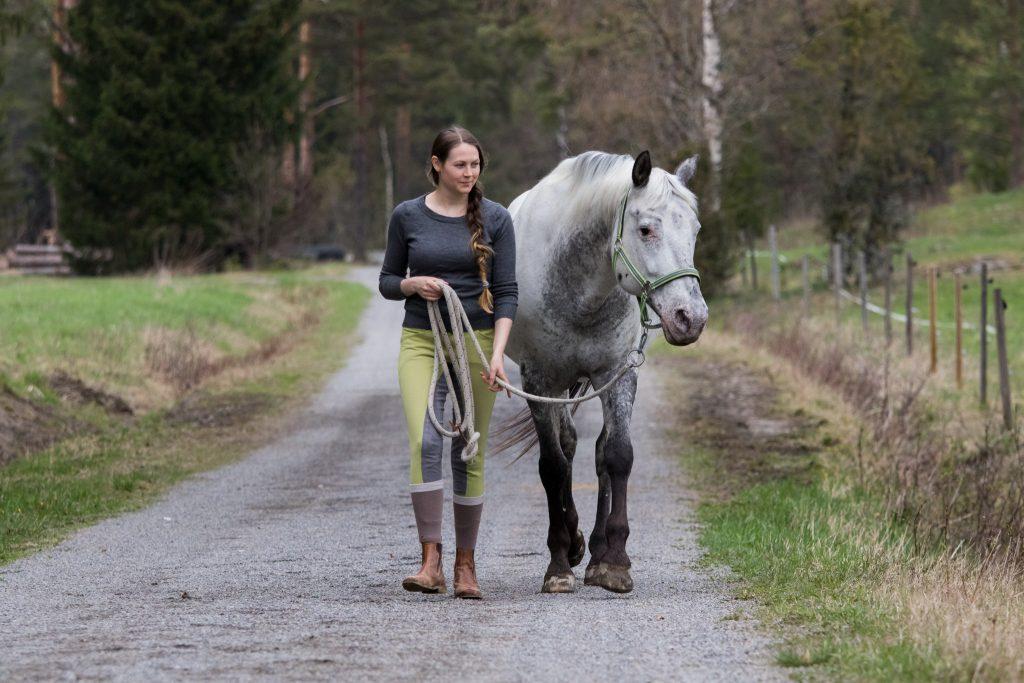 Hevosen rentous