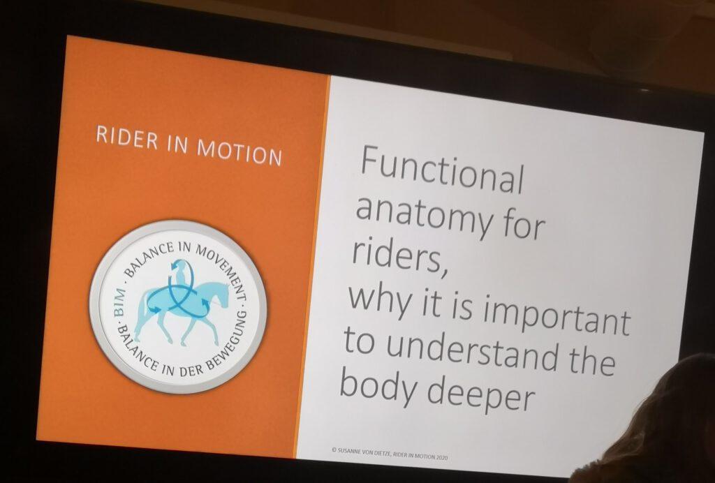 Ratsastajan kehon toiminnallisuus